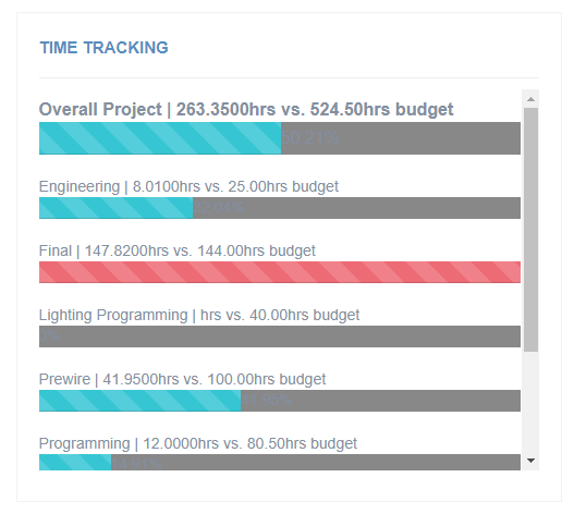 Time and Budget Tracking